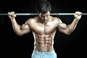 muscle and testosterone